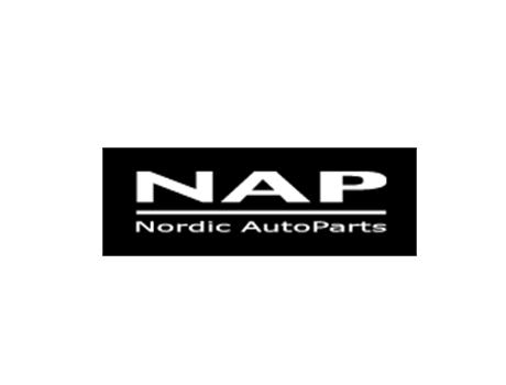 NAP - Nordic AutoParts logo